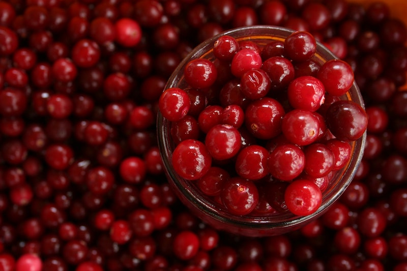 Wisconsin Cranberry Tours